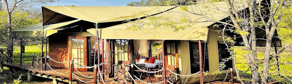Migration Camp Serengeti